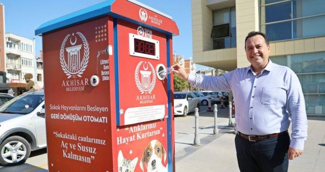 Akhisar'da Sokak Hayvanları 'Mamamatik' İle Beslenecek