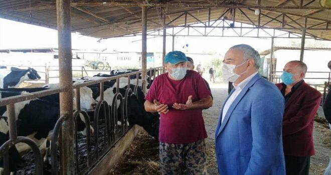 Bakırlıoğlu; ''Hayvan Sayılarındaki Tutarsızlık Meclis Gündeminde''