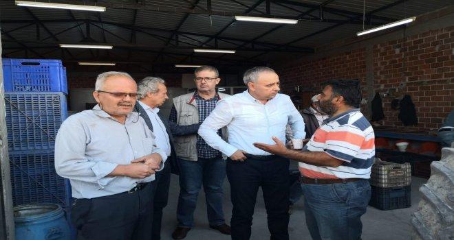 CHP Manisa Milletvekili Bakırlıoğlu ''Zeytin Üreticisi İflasın Eşiğinde''