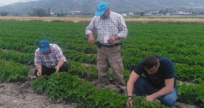Gıda Tarım ve Hayvancılık Müdürlüğü sebzecilere önerilerde bulundu
