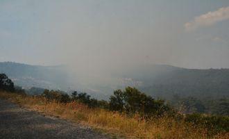 Akhisar'da Korkutan Orman Yangını