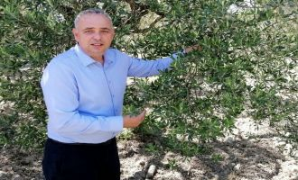 Milletvekili Bakırlıoğlu; ''Zeytin Üreticisinin Kredi Borçları Ertelensin''
