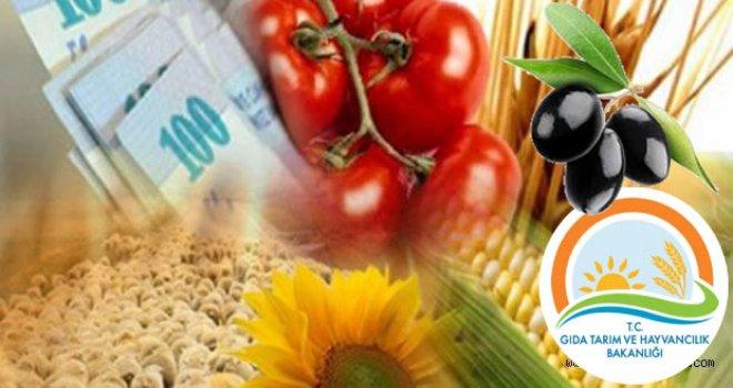 Tarıma Dayalı Yatırım Desteğine Ait 5 Yıllık Program Açıklandı